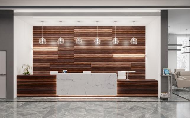 Дизайн-проект зоны ресепшен отеля М1 Сколково 4 вариант
